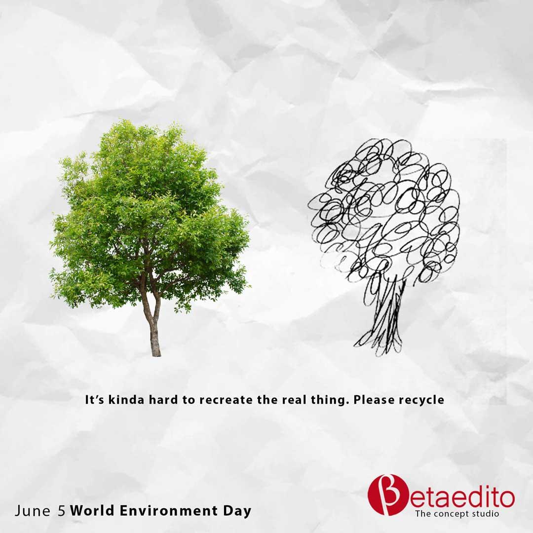 Betaedito Environment Day